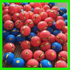 Customized hot selling outdoor toy flying disc ball throw a disc , catch a ball,flying toy flat ball