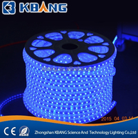 PVC LED Flexible RGB Strip Light Waterproof AC220V IP68