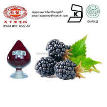 100% Dried Natrual Fuit Extract Mulberry Fruit Extract / Mulberry Extract Anthocyanins