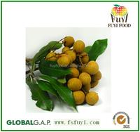 100% Fresh natural longan fresh fruit manufacturer