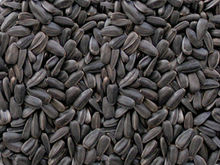 Oil sunflower seeds