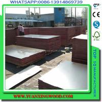 alibaba sale smooth surface eucalyptus core concrete form plywood
