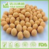 Top Seller,FDA ,BRC,IFS Certified Cheese Peanuts,Roasted Coated Peanuts