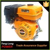 China gasoline engine manufacturor Tenglong brand 173f 8hp Best price and good quality 250cc 4 stroke engine with part for sale