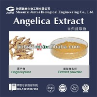 specialized production natrual organic Angelica Powder