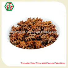 China wholesale merchandise best quality autumn star anise