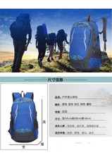 Outdoor sports custom 2015 new sports backpack backpack backpack to travel