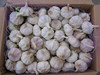 2015 New Natural Pure and Normal White Garlic Price