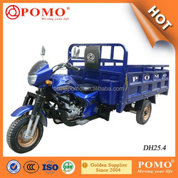 China Popular Heavy Load Powered By Famous Lifan Brand 250CC Powerful Cargo Three Wheel Motorcycle