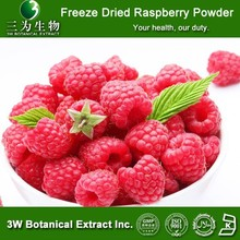 Freeze Dried Raspberry Fruit Juice Powder