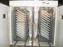 Poultry Incubator with Best Quality and After Sale-Service for Farm Use