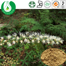 Black Cohosh Root Extract for Women Health