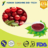 Medical Raw Material Eye Protection 25% Proanthocyanidins Cranberry Powdered Extract