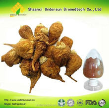 Powder Form And Herbal Extract Type Maca
