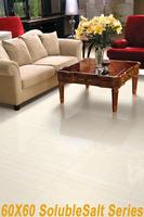 Promotion soluble salt porcelain tiles in 60*60