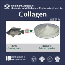 food or cosmetic grade 90% 95% skin whitening fish collagen