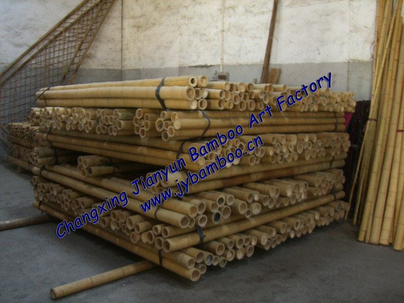 Natural bamboo pole buy cane