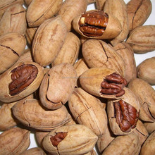 pecan nuts fattening pecan nut pie recipe pecan nut recipes