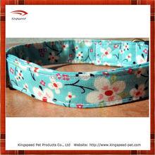 Chinese factory fresh design Pet Collar