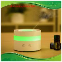 Wholesale ceramic fragrance diffuser Air Fresheners