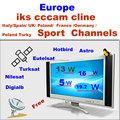 1 pcs venta al por mayor cccam cline cuenta del servidor para los canales de europa una experiencia de prueba gratuita para un día