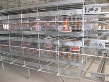 hot / cold galvanized chicken cage /chicken house