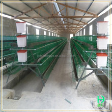 Poultry farm house design,chicken egg layer cages price,cheap multi-tier h type chicken cage for sale