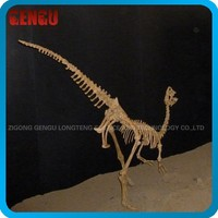 Family decoration small dinosaur skeleton toy