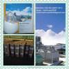 Good quality ,widely-used Bifenthrin 97%TC,10%EC.CAS NO.:82657-04-3