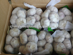 2015 Cold Storage Fresh Garlic All Kinds of Size and Package