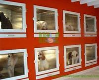 Modular pet display cage, dog cage MSLVC05