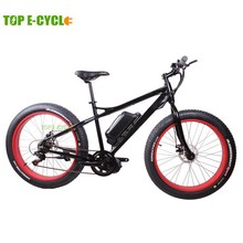 TOP E-cycle low price green power electric fat motor bike from China
