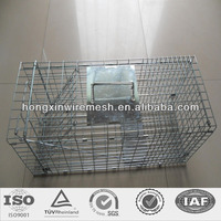 humane wire mesh mink live animal cage trap single and double door factory