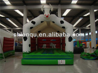Inflatable Adult Jumpers Bouncers for Sale