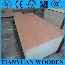 bintangor and okoume plywood commercial grade poplar core, 4ft x 8ft. glue E2 or MR.