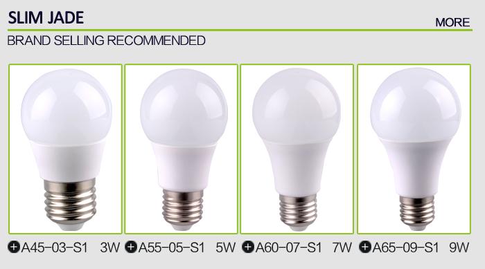Hot 1200 Lumen A65 Ceramic Bulb Led Light And Led 12w