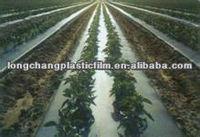 agricultural biodegradable mulch film