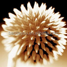 best quality flower sample picture of canvas/canvases painting