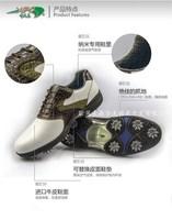Новый гольф обувь, мужская обувь для гольфа, гольф гольф обувь, непромокаемая, стабильность