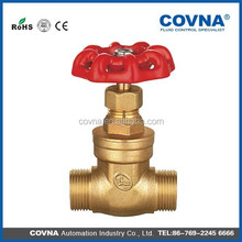 China cast iron non-rising brass stem gate valve