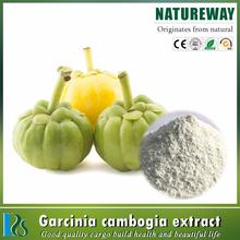 china manufacturers wholesale 100% pure natural Garcinia Cambogia Extract 50%, 60%, 70%, 95%HCA