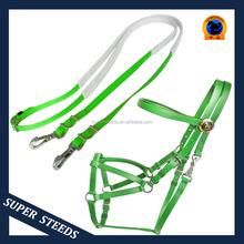 Plastic Endurance Horse Bridle with horse lead