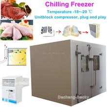 Chilling freezer -20 degrees cold storage room to freeze chicken and beef