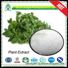 100% natural Best price Natural Andrographis Paniculata powder extract