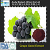 New Arrival Low Price Organic Grape Seed Extract Powder
