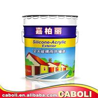 Caboli heat absorbing exterior wall emulsion paint