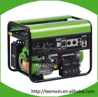 Teenwin small biogas generator for home