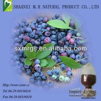Bilberry Extract with Anthocyanidins 25%