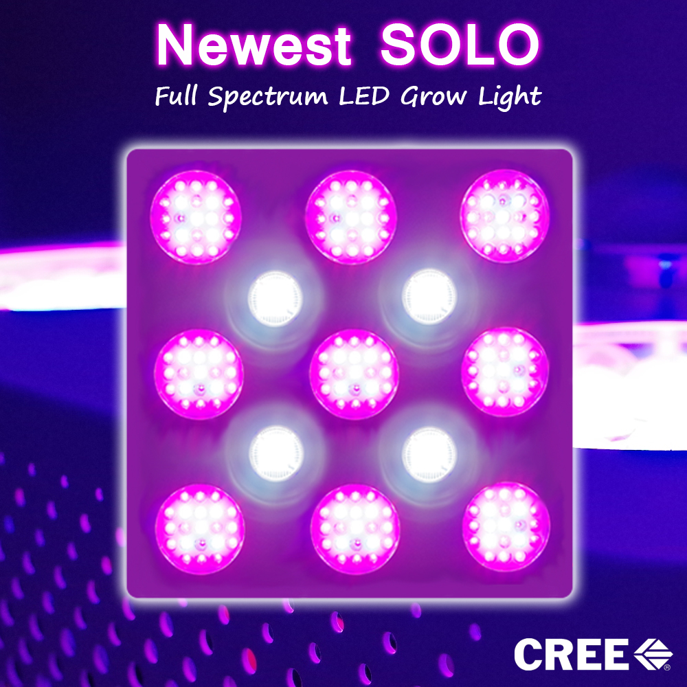 white 1000w cob led grow light full spectrum buy cob led grow light. Black Bedroom Furniture Sets. Home Design Ideas