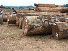 tali round logs